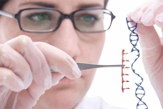 Các chuyên gia của BGI gần như hoàn tất việc giải trình tự gene của 2.000 cá  nhân nằm trong số những người thông minh nhất thế giới.