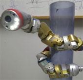 Robot rắn