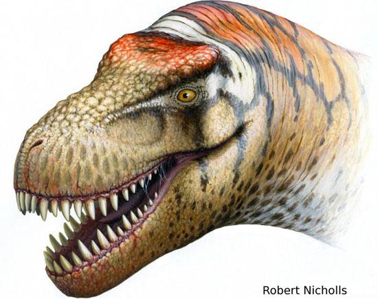 Tìm thấy họ hàng của khủng long bạo chúa
