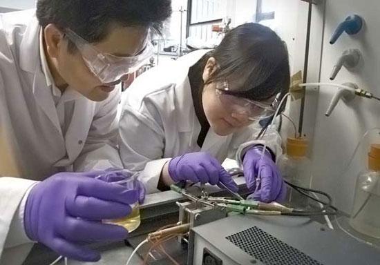 Chip pin nhiên liệu đã được khai sáng