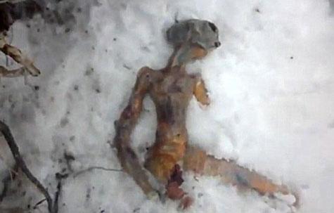 Clip người ngoài hành tinh ở Nga là rởm?