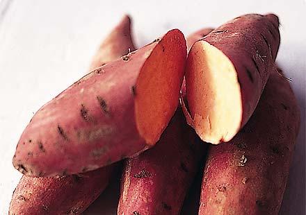 Trung Quốc phát hiện bột khoai làm từ mực viết, dầu hỏa