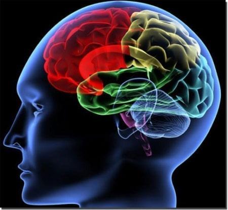 Không nên đánh giá trí tuệ qua điểm IQ