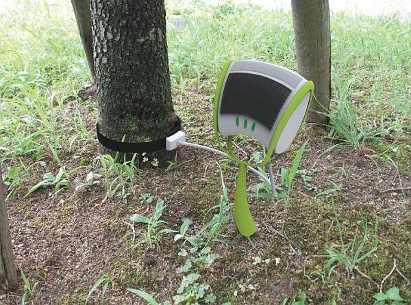 Mầm cây thông minh biết đo khí thải CO2