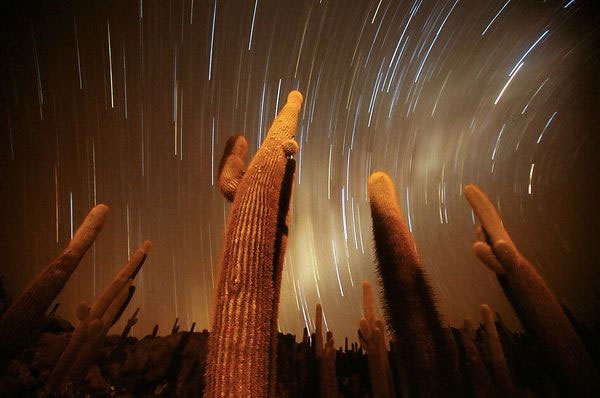 Những bức ảnh vũ trụ nổi bật nhất tuần qua