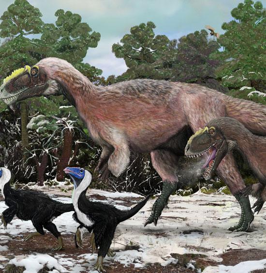 Phát hiện khủng long bạo chúa có lông cực đẹp