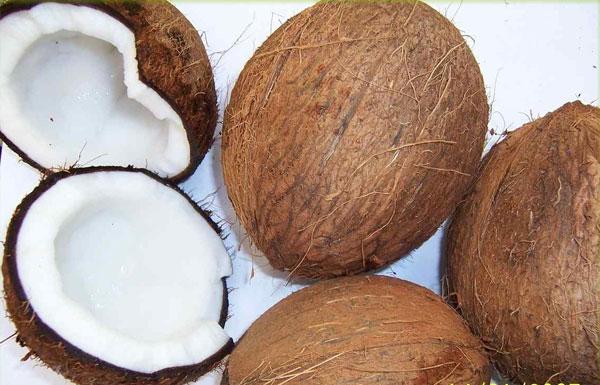 Giảm cơn khát điện bằng quả dừa