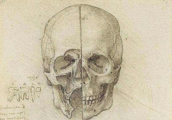 """Nhiệm vụ """"lấy hộp sọ"""" được Leonardo dành riêng một ví trí dễ thấy trong trang sổ tay."""