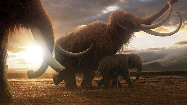 Cận cảnh xác ướp của voi ma mút Yuka