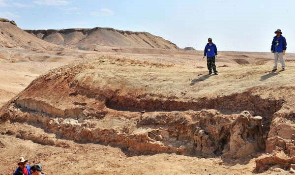 Trung Quốc phát hiện hóa thạch khủng long lớn chưa từng thấy