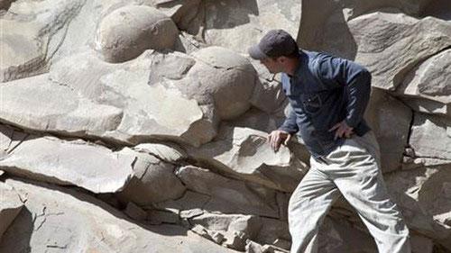 Một nhà khoa học quan sát những thứ được ông này tin là trứng khủng long hóa thạch