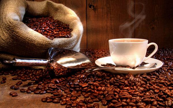 Cà phê chỉ có tác dụng với người lười
