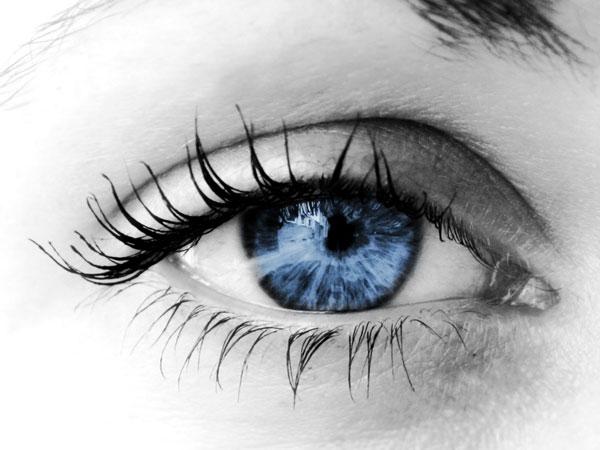 Cấy tế bào để giúp người khiếm thị phục hồi thị lực?