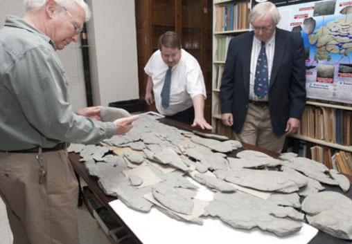 Hóa thạch bí ẩn khiến nhà khoa học Mỹ bối rối