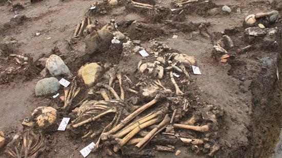 Những bộ xương người Việt cổ trong các mộ táng vừa khai  quật tại Cồn Cổ Ngựa (Thanh Hóa)