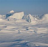 Trái Đất ấm lên, Bắc Cực sẽ bùng nổ thảm thực vật