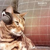 Video: Sony giới thiệu dòng sản phẩm cho thú cưng