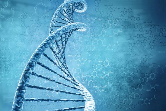 Loại bán dẫn sinh học giúp điều khiển các tế bào sống