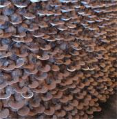 Hoàn thiện quy trình trồng nấm linh chi tại Huế