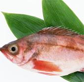 Chọn cá tươi thế nào là khoa học?