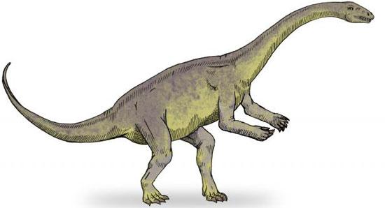 Mô hình tái tạo khủng long Lufengosaurus.