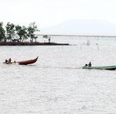 Vườn quốc gia Mũi Cà Mau được công nhận khu Ramsar