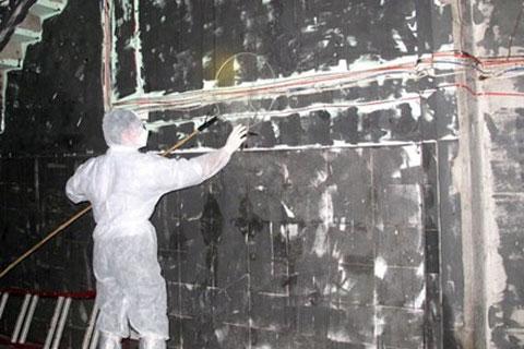 Cơ quan Thú y vùng 6 (TP.HCM) đang lấy mẫu chim  yến ở Ninh Thuận để xét nghiệm.
