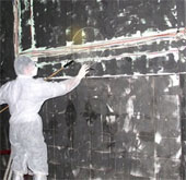 Vòng vo chuyện công bố dịch chim yến nhiễm H5N1
