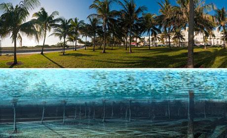Bờ biển nổi tiếng của thành phố Miami sẽ trở thành một phần của đáy biển nếu biến đổi khí hậu tiếp tục diễn ra. Nickolay Lamm, một nhà nghiên cứu và họa sĩ tại Mỹ, minh họa tác động của hiện tượng ấm lên toàn cầu đối với các thành phố Mỹ trong tương lai để thế hệ ngày nay hiểu rằng, con cháu của họ sẽ không còn cơ hội chiêm ngưỡng nhiều kỳ quan nếu họ không hành động từ bây giờ.