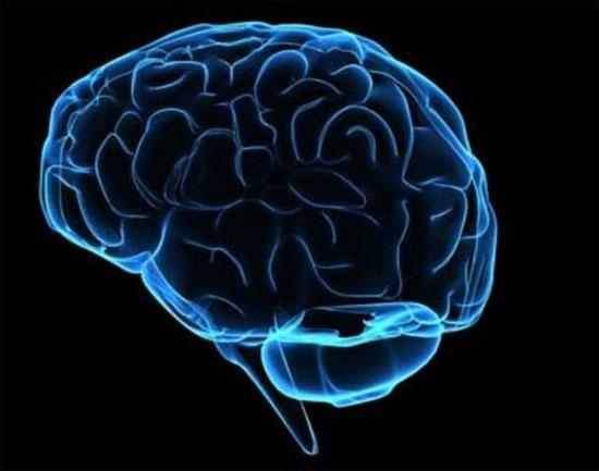 Chuyển hóa tế bào da thông thường thành tế bào não