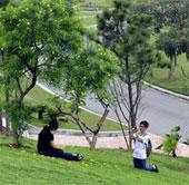 Muốn hạnh phúc, hãy sống gần công viên, cây xanh