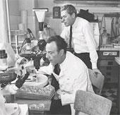 Chủ nhân giải Nobel Y học năm 1965 từ trần