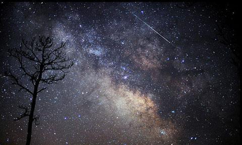 Mưa sao băng Lyrids ở phía nam Maryland ngày 14/4. Từ ngày 13 tháng này, người xem đã có thể thấy một số sao băng của trận Lyrids nhưng với số lượng nhỏ. Theo Tổ chức sao băng quốc tế, thời điểm quan sát trận sao băng này tốt nhất là đêm qua, rạng sáng nay.