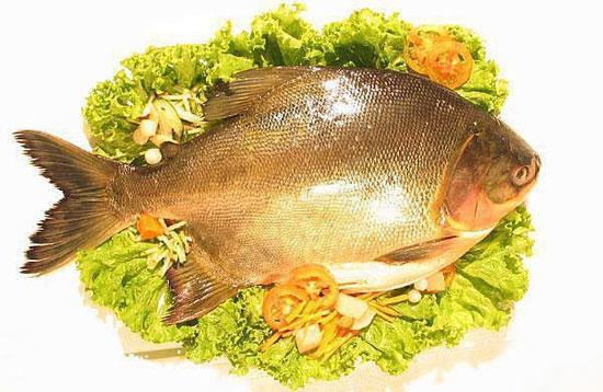 Hải sản tươi luôn có mùi dịu nhẹ hoặc không có mùi tanh