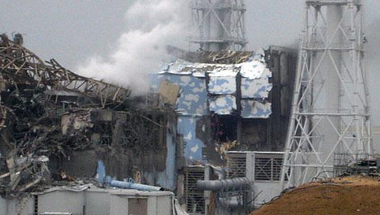 Nhật Bản: Còn người Việt mất tích trong thảm hoạ 11/3