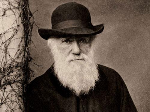 """Tranh cãi """"có một không hai"""" về Thuyết tiến hóa"""