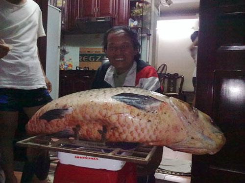 Bắt cá trắm đen nặng kỷ lục tại Hà Nội