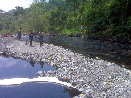 Bảo vệ rừng nhiệt đới: ba trở ngại chính