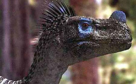 Clip: Dạo chơi cùng khủng long
