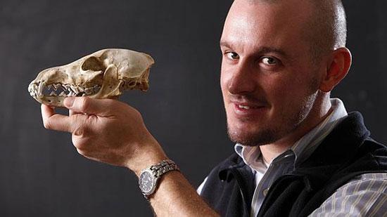 Người Mỹ đã ăn món... thịt chó từ 9000 năm trước