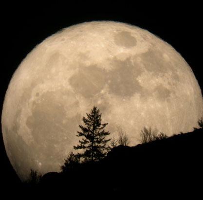 """""""Siêu trăng"""" sắp xuất hiện"""
