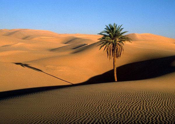 Phát hiện nguồn nước ngầm lớn gần sa mạc Sahara