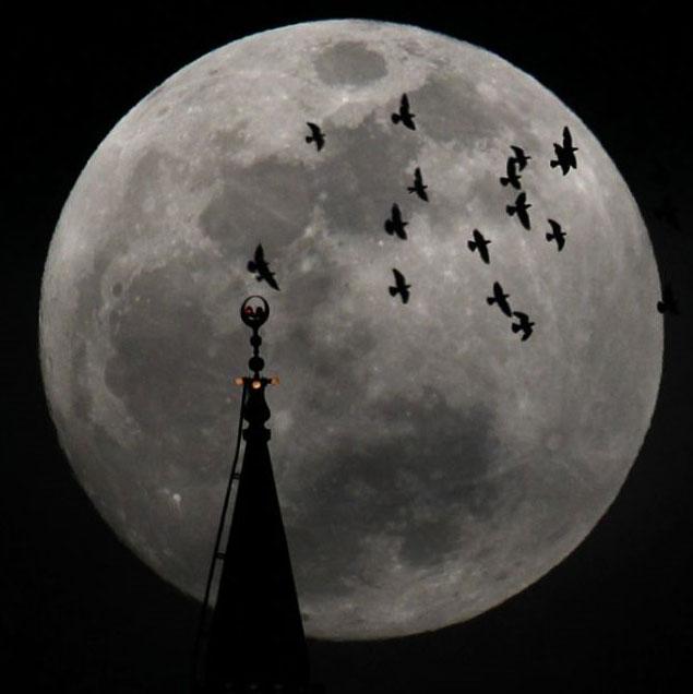 """Ngắm """"siêu trăng"""" trên khắp thế giới"""
