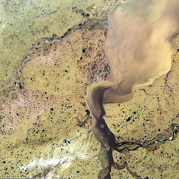 Khatanga - đồng bằng sông ở Siberia, Nga, trông gần giống như một đám mây khi gió thổi qua khu vực