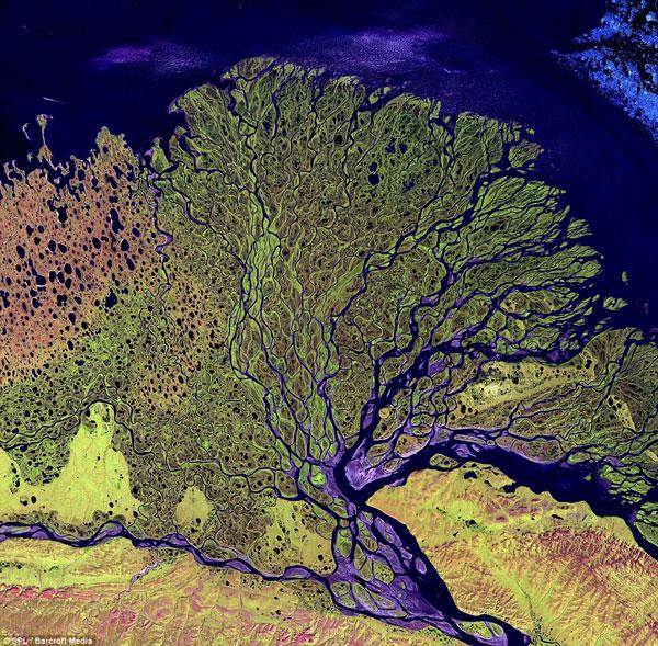 """Ảnh đẹp: Những """"nơron thần kinh"""" của Trái đất"""