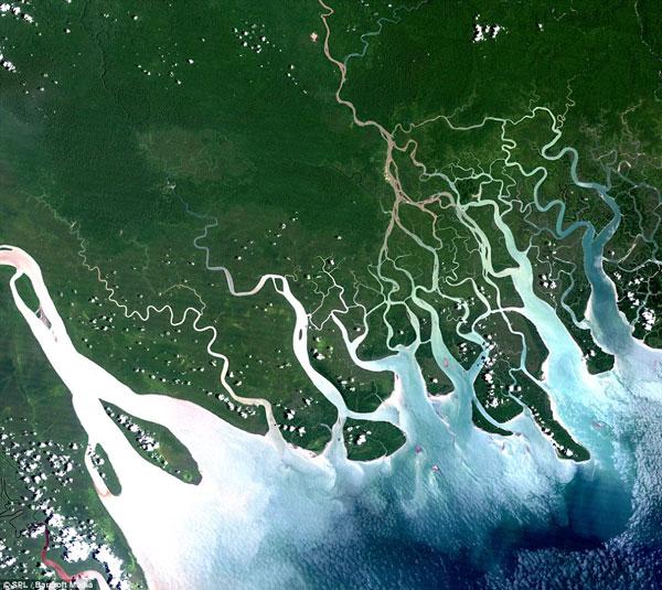 Vịnh Papua, Papua New Guinea: khu vực rộng 400km nắm giữ một vùng biển khoảng 35.000km2, bờ biển được bao quanh bởi rừng ngập mặn