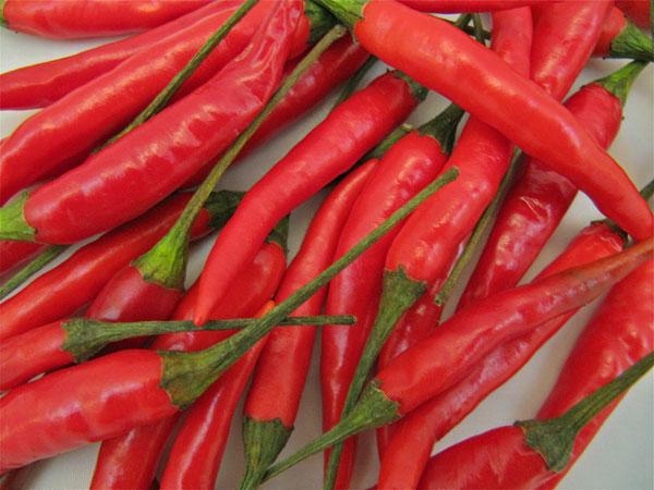 Chống béo bụng bằng ớt