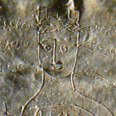 Giải mã lời nguyền của thần đầu rắn 1600 năm trước