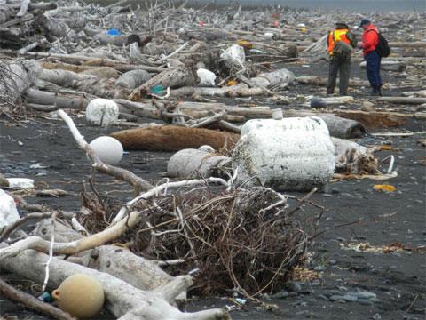 Rác sóng thần Nhật đổ bộ lên Alaska