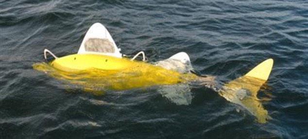 Robot cá phát hiện nước ô nhiễm